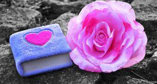 Dear Diary [MarvelAmber_pixabay.com]