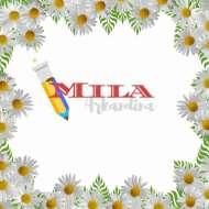 Mila Arkandina Halima